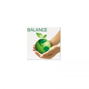 BALANCE-CHIP zur Lebensmittel-Energetisierung und Harmonisierung